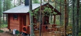 Дачные дома из оцилиндрованного бревна